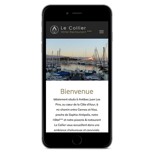 Création site Internet responsive Le Collier par Dreampix communication Antibes
