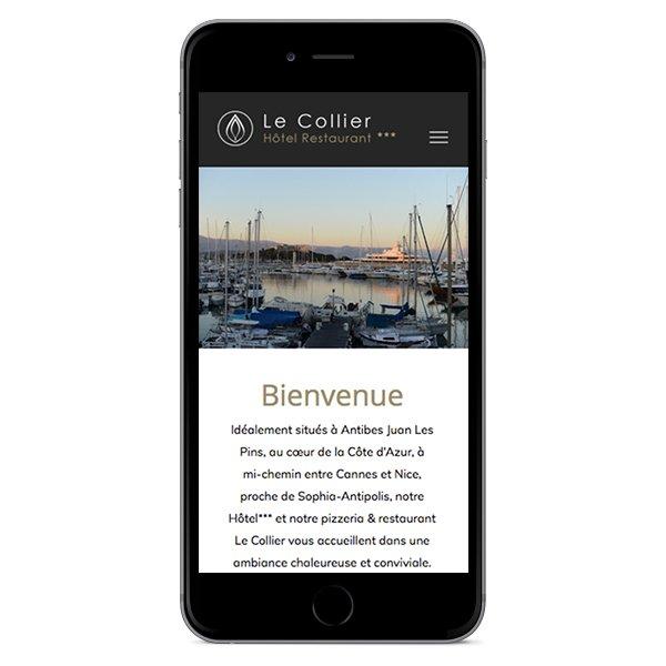 Création site Internet responsive Le Collier par Dreampix communication Antibes
