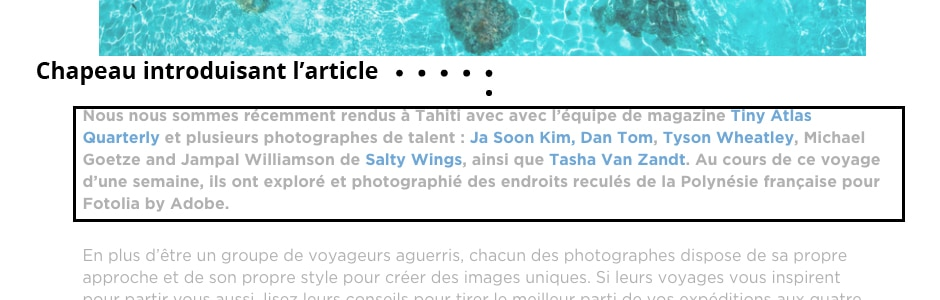 Article site web : un chapeau