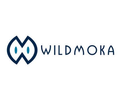 Références DreamPix communication Antibes : Wildmoka